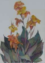 Yellow Canna Lily