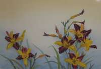Yellow and Maroon Lilies